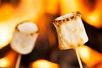 Toasted Marshmallow Fragrance Oil - Yankee Type