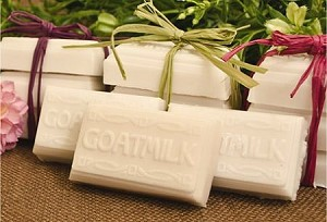 Guest Sized Goats Milk Tray Soap Mold