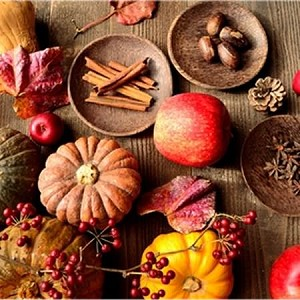 Harvest Spice Fragrance Oil