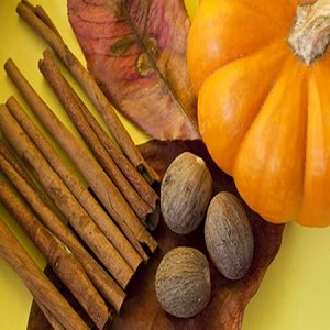 Pumpkin Spice Fragrance Oil