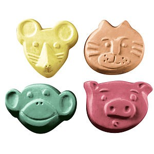Kids Critters 2 Soap Mold