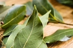 Tobacco and Bay Leaf Fragrance Oil