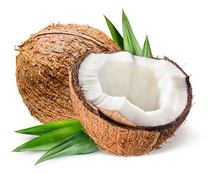 Coconut Leaves BBW Type Fragrance Oil