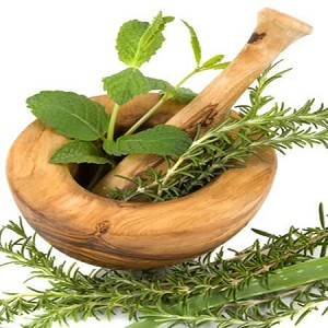 Rosemary Mint Fragrance Oil